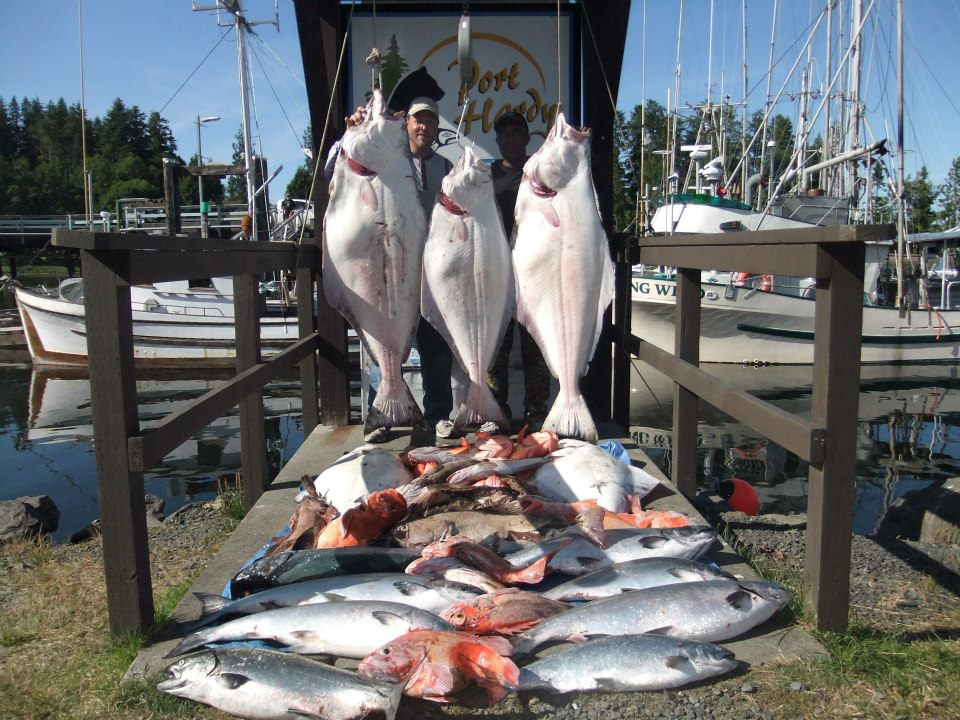 Serengeti all inclusive port hardy vancouver island bc for Fishing vancouver island